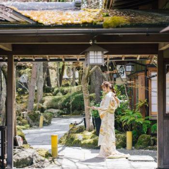 桜の花びらが舞う日本庭園